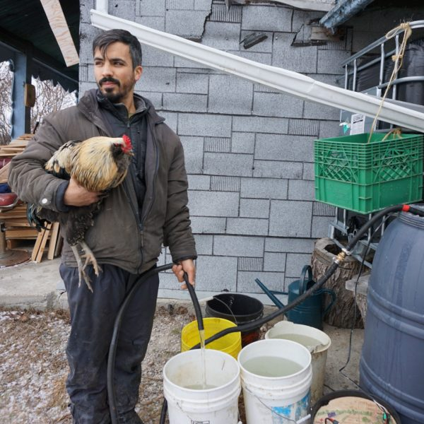 Antonio (and rooster!) using the Solar Bucket to replenish our sheep's water buckets
